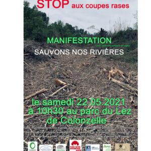 Stop aux coupes rases : sauvons nos rivières !